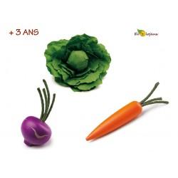Dinette bois Légumes Dinette écolo Nature Bio