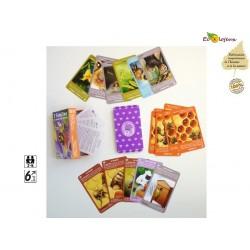 Jeu abeilles Jeu société français Bétula éditions Abeilles jeu cartes : 7 Familles le mondes des abeilles